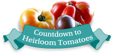 Count Down To Tomatos!